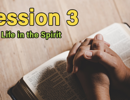Session 3: New Life in the Spirit